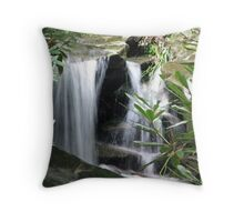 Beauty Concealed Throw Pillow