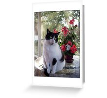 Death Can Be Forgiven Greeting Card