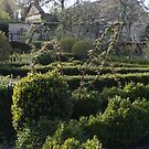 Sculptural Box - Barnsley House Gardens by Daisy-May