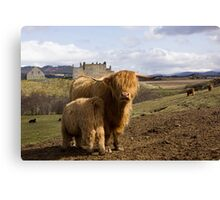 Highland County Canvas Print