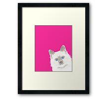 Birmin Peeking cat cute funny cat gift for cat lady trendy pink white cat Framed Print