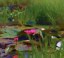 Water Lily Billabong by Donuts