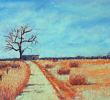 Summer Drought-The Wimmera by Margi