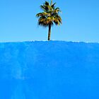 Palm Tree by AlainKhouri