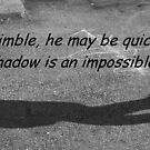 Shadow Jumping by Cathy O. Lewis
