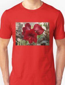 Christmas Red Amaryllis Flowers Unisex T-Shirt