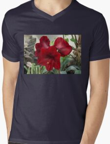 Christmas Red Amaryllis Flowers Mens V-Neck T-Shirt
