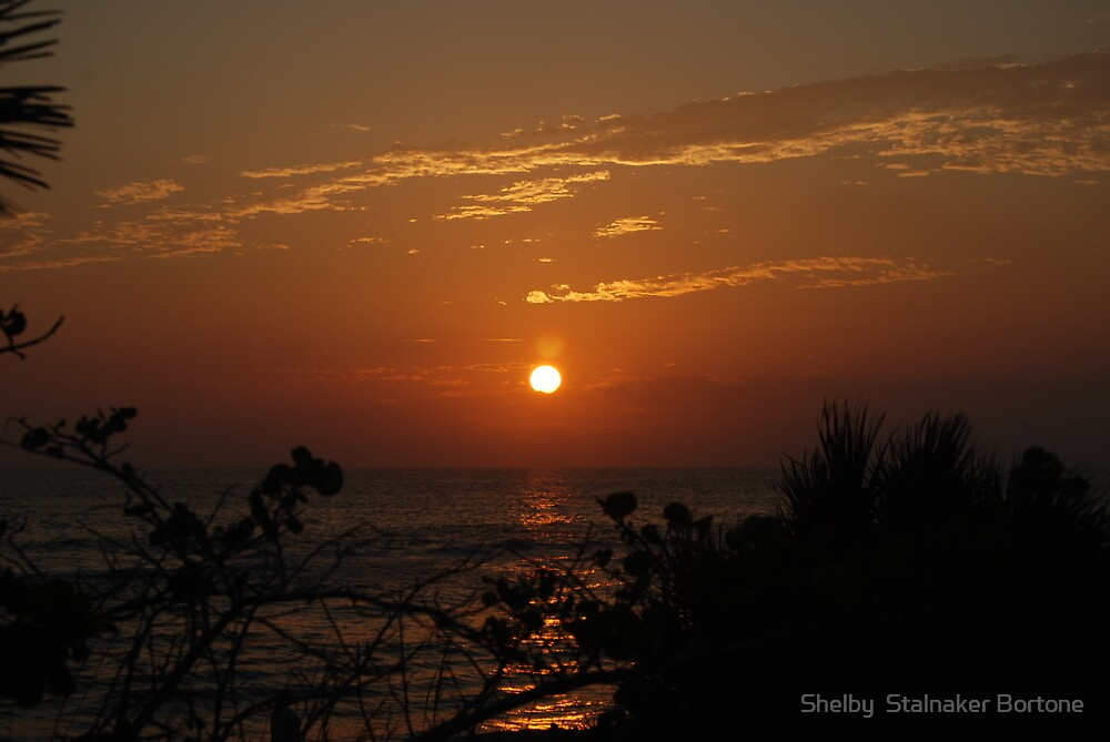 Casperson Beach Florida, USA by Shelby  Stalnaker Bortone