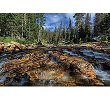 Utah Nature Photography - The Provo River in Utah up close Photographic Print