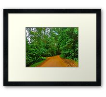 Earth Road in the Forest Framed Print