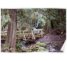 Coal Creek Falls Walking Bridge Poster