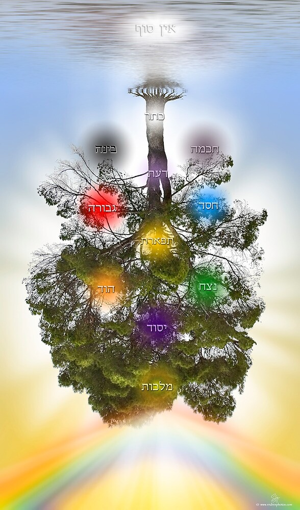 The Tree Of Life by Endre