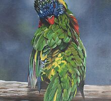Rainbow Lorikeet by Jo O'Brien-Welch