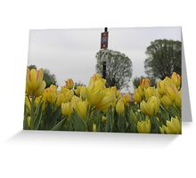 Wading into a sea of yellow Greeting Card