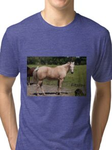 Fitzroy - NNEP Ottawa, On Tri-blend T-Shirt