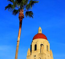 Stanford University Campus. Hoover Foundation Tower with a Palm Tree. California 2009 by Igor Pozdnyakov