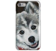 Oreo the Pomsky  iPhone Case/Skin