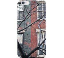 house facade iPhone Case/Skin