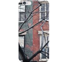 house facade iPhone Case/Skin