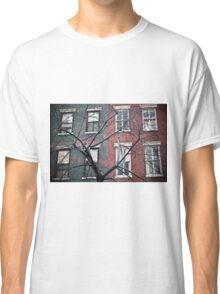house facade Classic T-Shirt