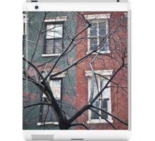 house facade iPad Case/Skin