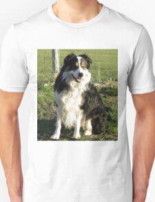 Laddie, Mans Best Friend. T-Shirt