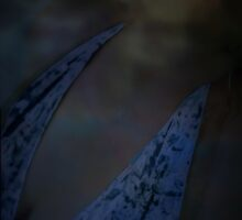 Blue Moon © Remember & Renew © Vicki Ferrari by Vicki Ferrari