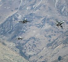 FA18 Hornets - WOW 2010 by bigpetesol
