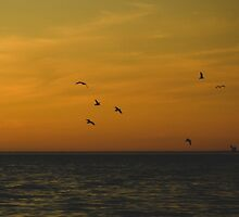 Sunset on Lake Michigan by Olivia Joy StClaire