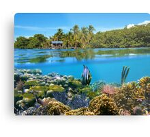 Over and underwater sea coral reef fish with tropical shore Metal Print