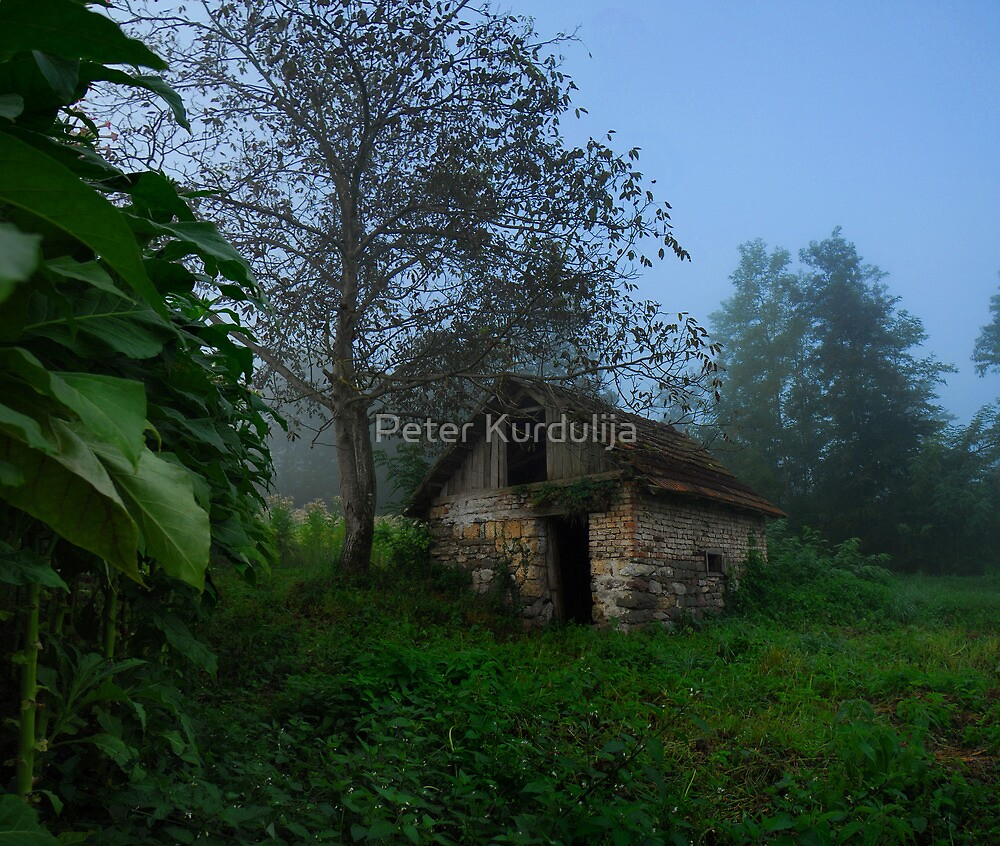 I Remember, At One Time Everything Seemed To Be Simple by Peter Kurdulija