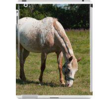 Caramel - NNEP Ottawa ON iPad Case/Skin