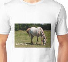 Caramel - NNEP Ottawa ON Unisex T-Shirt