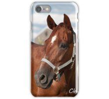 Chico - NNEP Ottawa, ON iPhone Case/Skin