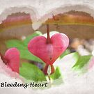 My Bleeding Heart by SharonAHenson