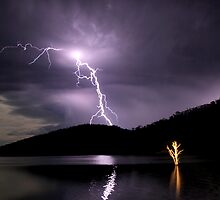 Eildon Lightning- tree in water lite by torch by Tony Wratten