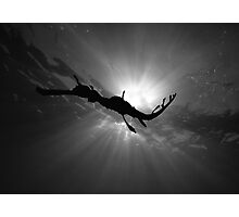 Seadragon & Sunlight Photographic Print