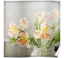 Freesias in Glass Jar Poster