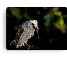 Owl versus Mouse Canvas Print