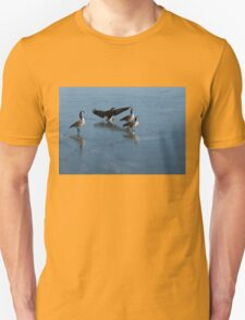 Precarious Walk on the Ice - Canada Geese, Lake Ontario, Toronto T-Shirt