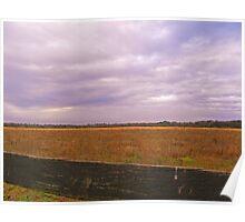 Amber Field of grain Poster
