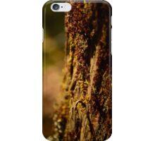 Tree lichen iPhone Case/Skin