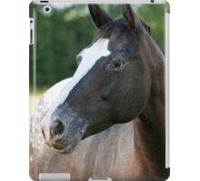 Zoe - NNEP Ottawa iPad Case/Skin