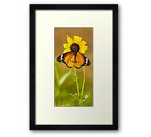 The Butterfly and Yellow Flower-Sequel#1 Framed Print
