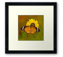 The Butterfly and Yellow Flower-Sequel#2 Framed Print