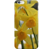 Golden Spring iPhone Case/Skin