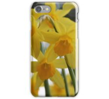 Golden Spring iPhone Case/Skin