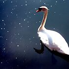 Tranquillity by Tom Clancy