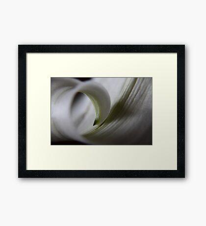 curl ... Framed Print
