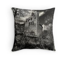 Framed by the ruin of the season Throw Pillow